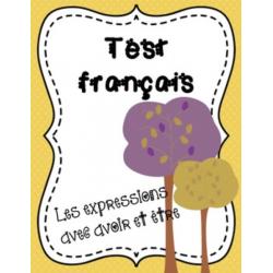 Test : expression avoir et être