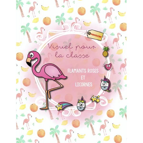Déco classe flamants roses+licornes-Modifiable
