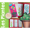 Les plantes - Mini Lapbook