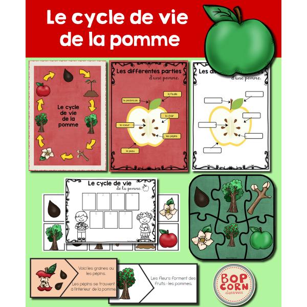 Le cycle de vie de la pomme - Pack 1