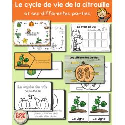 Le cycle de vie de la citrouille - 1