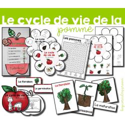 Cycle de vie de la pomme - Pack 3
