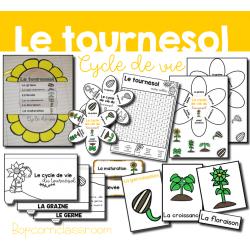 Cycle de vie du Tournesol - Pack 2