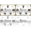 Le cycle de vie de la chauve-souris