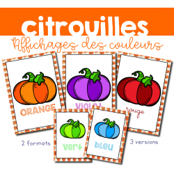Affichages citrouilles : Les couleurs