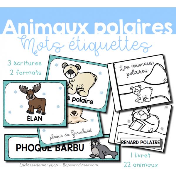 Animaux polaires - 22 mots étiquettes
