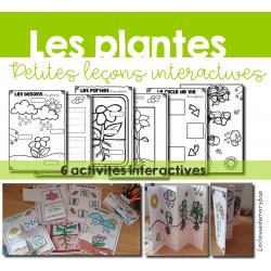 Les plantes - Petites leçons interactives