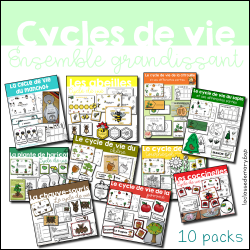Cycle de vie - Ensemble grandissant