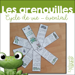Cycle de vie de la grenouille - Livret éventail