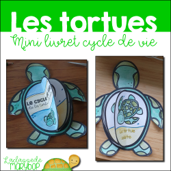 Cycle de vie de la tortue de mer - Mini livret