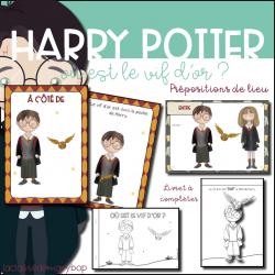 Harry Potter - Où est le vif d´or ?
