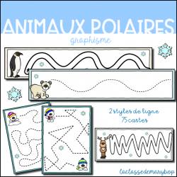 Graphisme - Animaux polaires