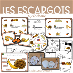 Le cycle de vie de l´escargot