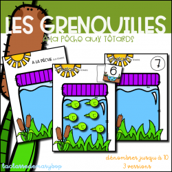 Grenouilles - A la pêche aux têtards