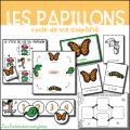 Cycles de vie - Version simplifiée - Pack 1