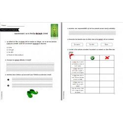 ECR: questionnaire sur le film Le grinch