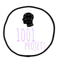 1001 projets