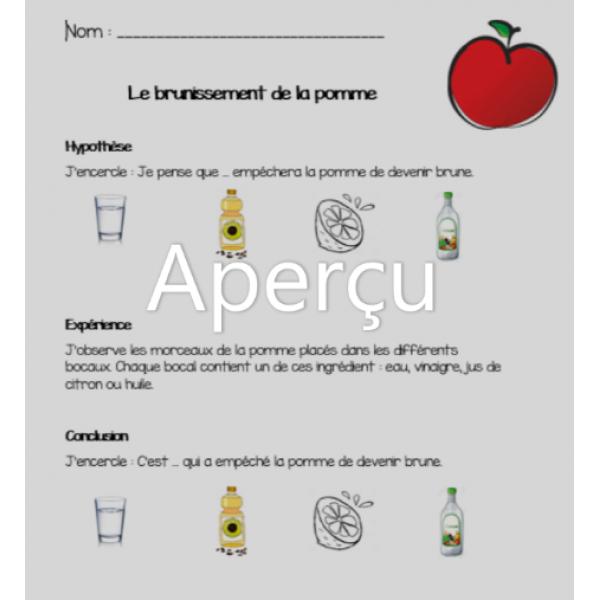 Expérience présco: brunissement de la pomme