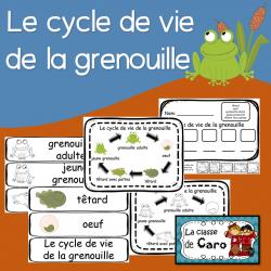 Cycle de vie de la grenouille - Imprimable