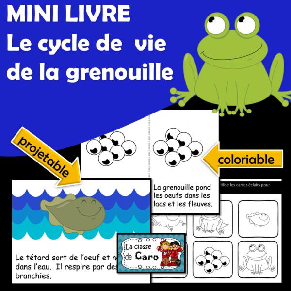 MINI LIVRE - CYCLE DE VIE DE LA GRENOUILLE