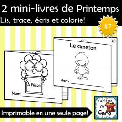 2 petits livres PRINTEMPS #7