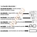 Écriture créative - BANDE DESSINÉE - Printemps