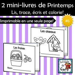 2 petits livres - Thème PRINTEMPS #6