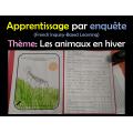 Apprentissage par l'enquête -Les animaux en hiver