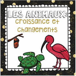 Les animaux (immersion)