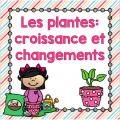 Les plantes (immersion)