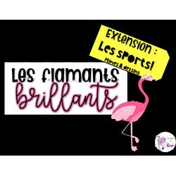 Les flamants brillants - Extension: Les sports!