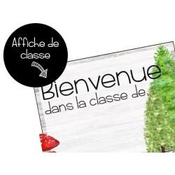 Affiche de classe // Renards & Forêts