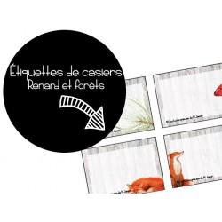 Identification des casiers // Renards & Forêts