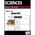 Les plantes à fleur // Sciences: 2e cycle