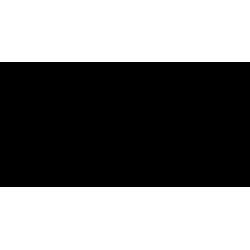 Description d'un personnage