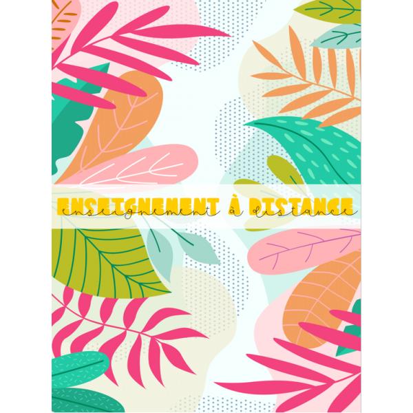 Ens.DISTANCE_Organisation