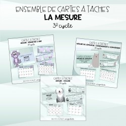 Ensemble cartes à tâches MESURE