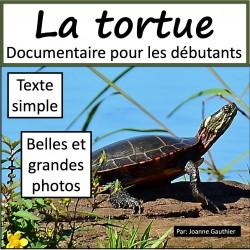 La tortue: livre numérique pour les débutants
