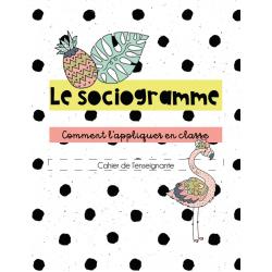 Le sociogramme - portrait de classe