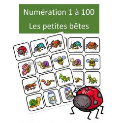 Numération 1 à 100 - Les petites bêtes