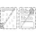 Cahier lettre B - Pommes