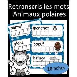 Retranscris les mots - Animaux polaires