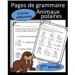 Grammaire - Animaux polaires