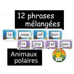 Phrases mélangées - Animaux polaires