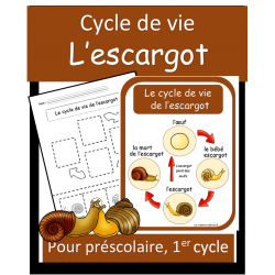 Cycle de vie - Escargot