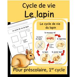 Cycle de vie - Lapin