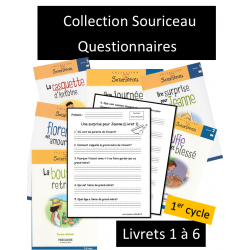 Questionnaires - Souriceau Débutant
