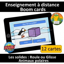 Solides - Roule ou Glisse - Animaux polaires