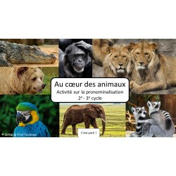 Au coeur des animaux 2e-3e cycle