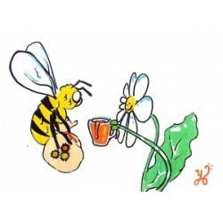 """Jeu pédagogique """" La pollinisation"""""""